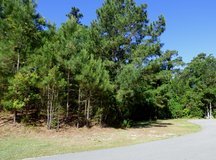 REDUCED $20,000! Beautiful Lot in Emerald Isle with Owner Financing in Camp Lejeune, North Carolina