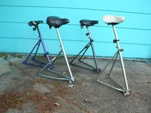 Bicycle Chair in Tacoma, Washington