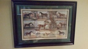 "Picture Print - Horse Picture - Matted and Framed - 24"" x 36"" in Chicago, Illinois"