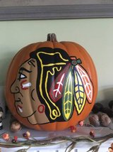 CHICAGO BLACKHAWKS PAINTED PUMPKIN in Chicago, Illinois