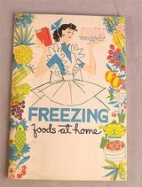 Vintage 1958 Freezing Foods At Home Recipe Book Pamphlet in Oswego, Illinois