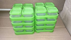 32 Green Sprouts - Freezer Cubes set in Chicago, Illinois