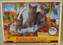 1000 Piece Jigsaw Puzzle with Kittens in Naperville, Illinois
