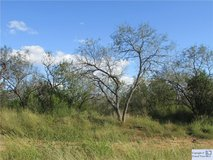 Need some room? 2.2 acres to build on! in Rosenberg, Texas