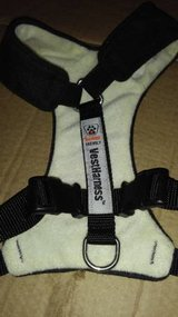 Heavy Padded small dog harness in Fort Lewis, Washington