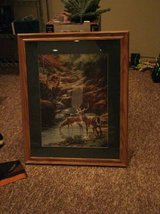 oak framed picture (excellent condition) in Joliet, Illinois