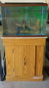 20 Gallon High Fish Tank & Stand & Accesories in Orland Park, Illinois