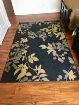 Area Rug in St. Charles, Illinois