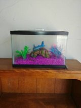 small tank with lid and decorative rocks and other itmes In Fairfield on Saturday 6/16 in Fairfield, California