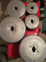 118 POUNDS / 53.8 KILOS of free weights in Chicago, Illinois