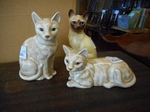 Decorative Cats in Elgin, Illinois