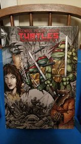 Teenage Mutant Ninja Turtles: The Ultimate Collection, Volume 1 in Chicago, Illinois