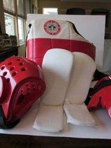 Tae Kwon Do Sparring Gear in Bartlett, Illinois