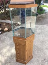 20 gal hexagon fish tank with wood stand in Orland Park, Illinois