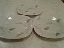 mikasa natural beauty gardenside ct002 salad plates in Orland Park, Illinois