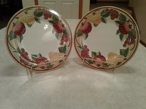 pier 1 mosaic fruit dinner plates in Orland Park, Illinois