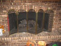 Large Fireplace Screen in Plainfield, Illinois