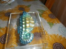 Merck Old World Sea Horse Blown Glass Ornament! I have it in a clear acrylic box in Spring, Texas
