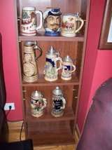 Beer Stein Collection with display rack in Orland Park, Illinois